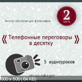 Фотобизнес. Аудио-Видео курсы (2013)